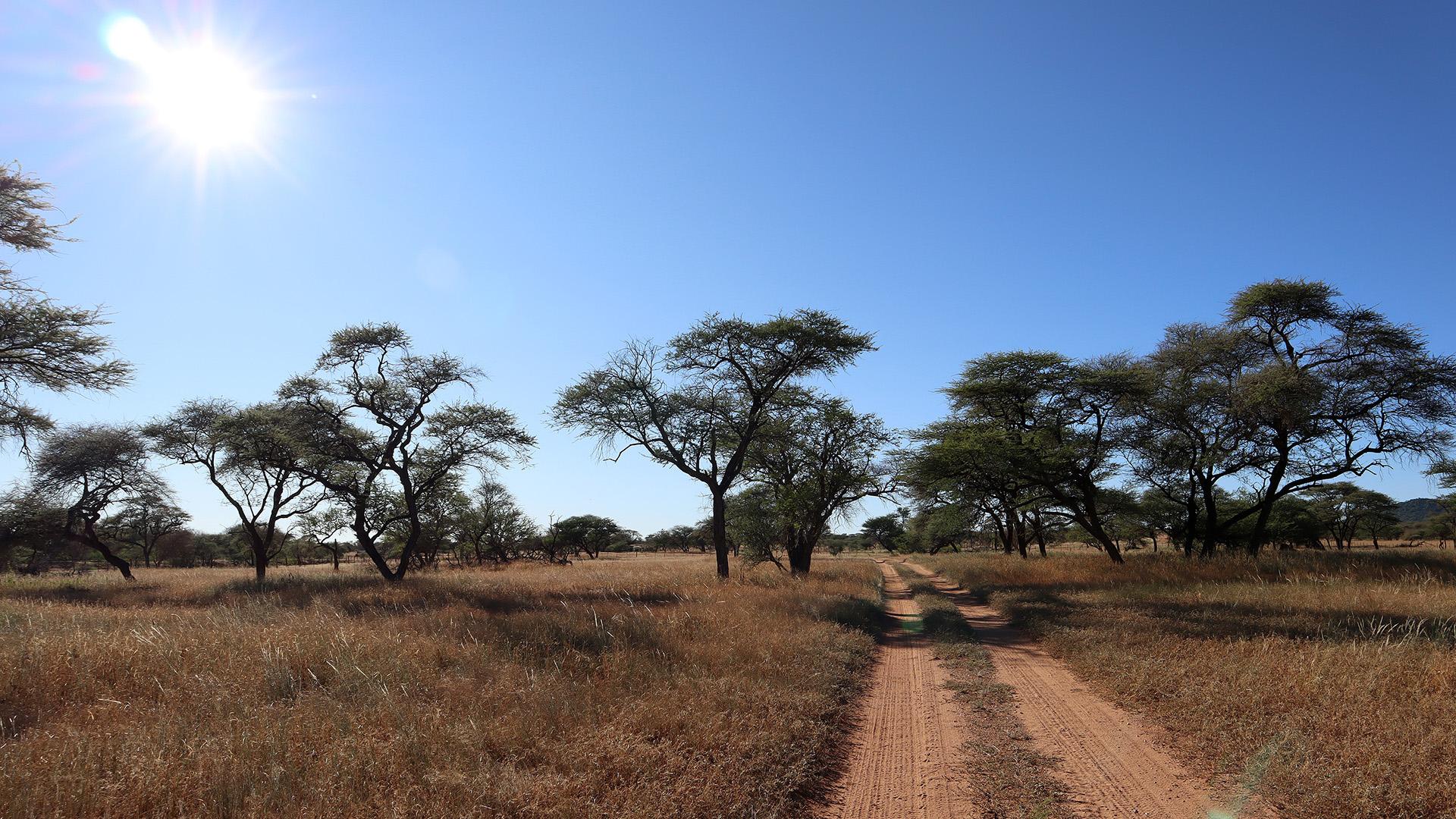 Auf dem Weg nach Kalkfeld in Namibia